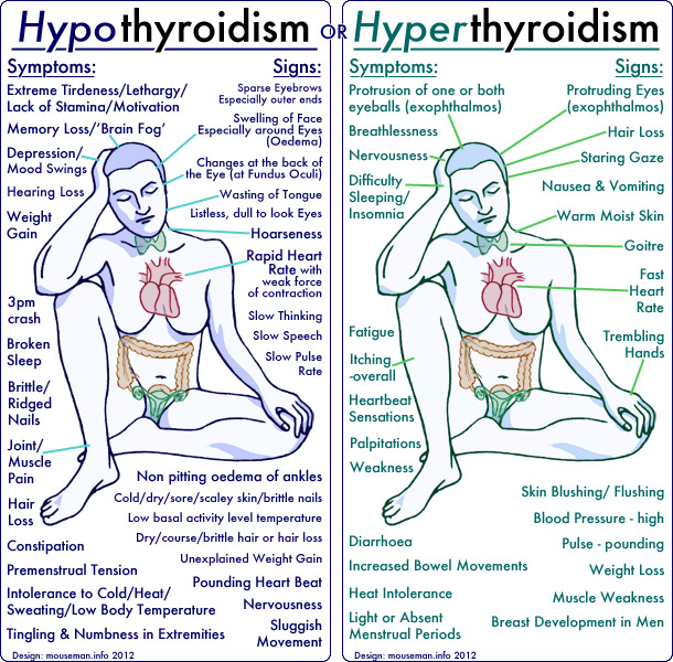 hashimoto single men Hashimoto's disease hashimoto's disease is the most common cause of hypothyroid (low thyroid) astragalus is available as a single from nsp.